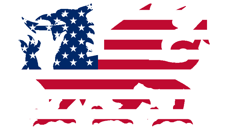 Combined Wales US Flag